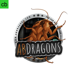ABDRAGONS.png