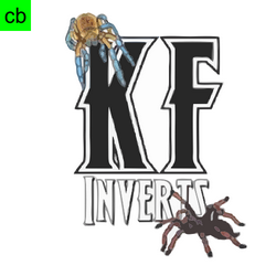 KF Inverts.png